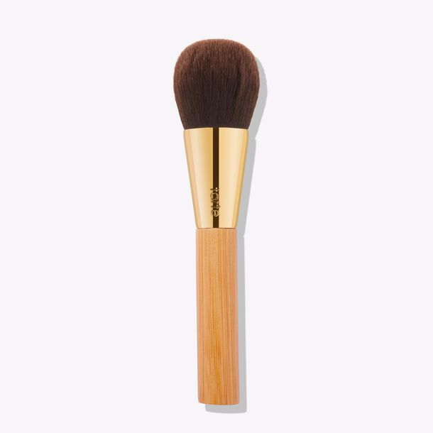 complexion powder brush